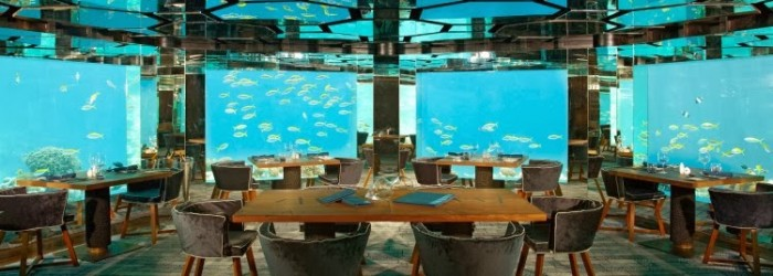 amazing-under-water-public-dining-room-at-Anantara-Kihavah-Villas-that-can-see-fish-playing-around