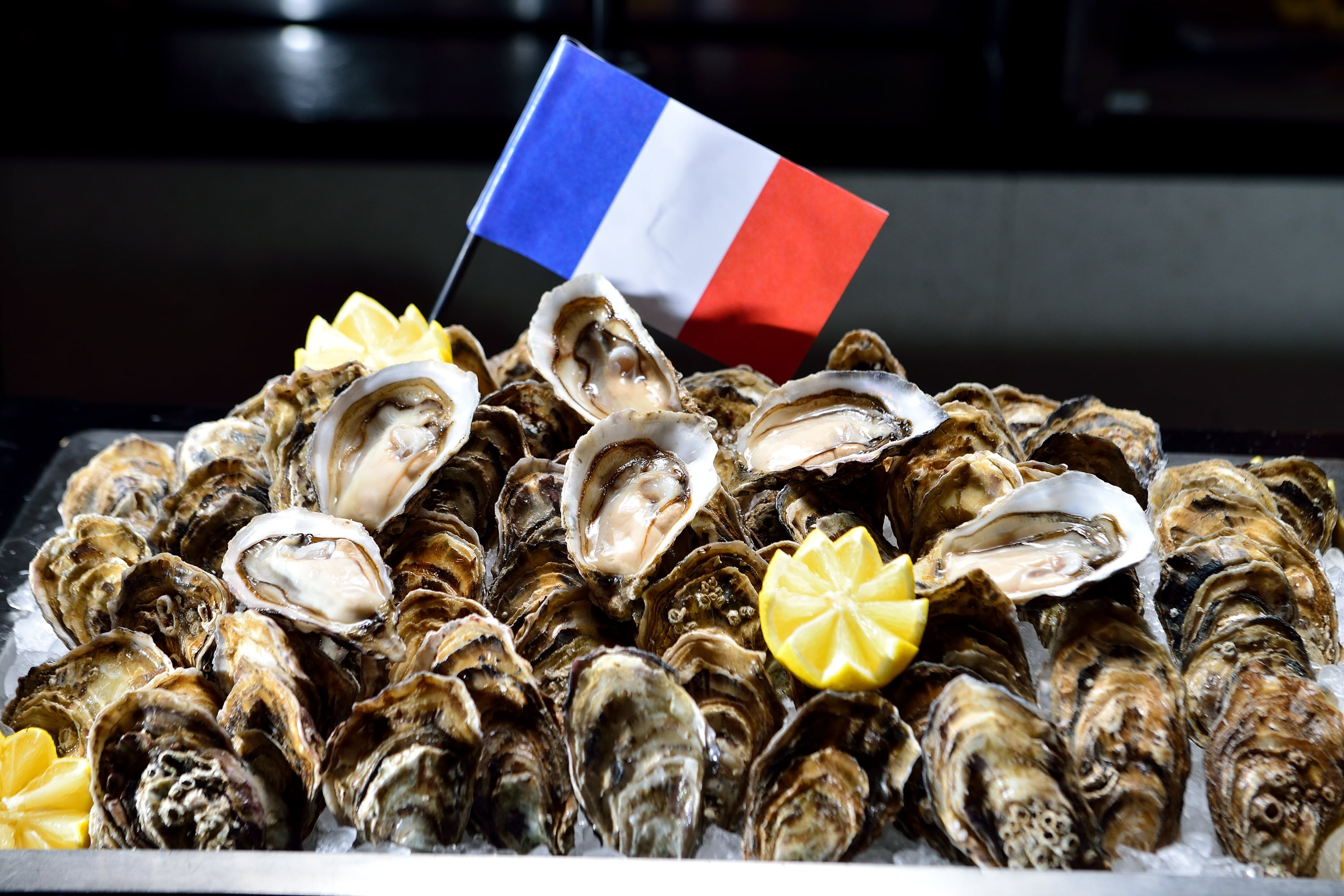 Fresh Shucked Oysters_France_2