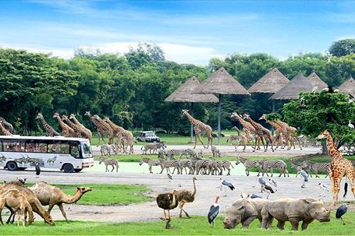 safari-world-bangkok-001