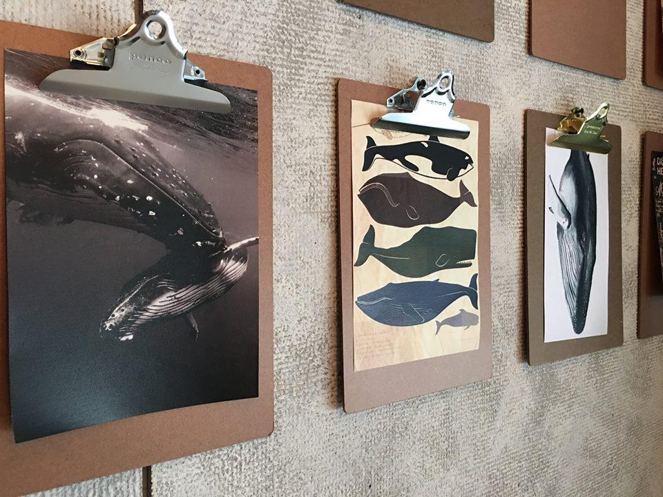 hotel-papa-whale-6