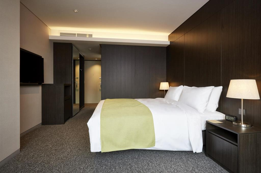 Nine Tree Premier Hotel Myeong dong 2 (16)