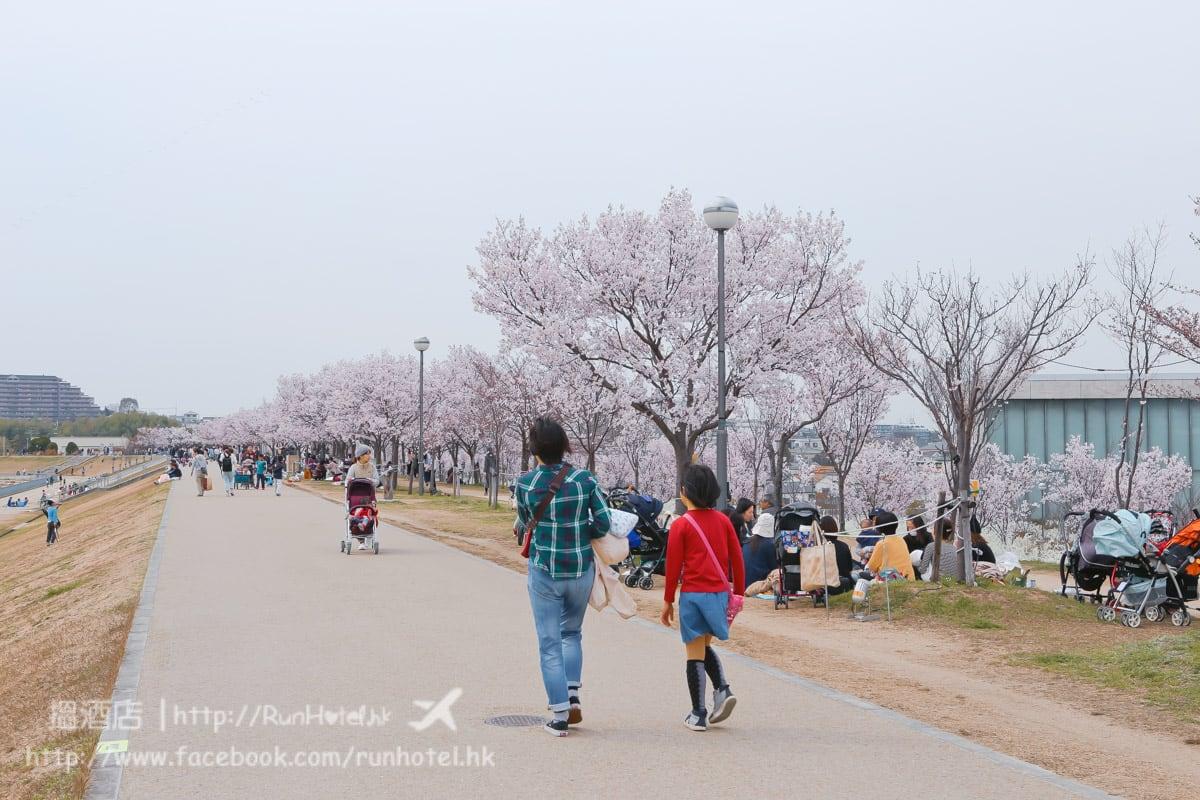 sayamaike sakura (29)